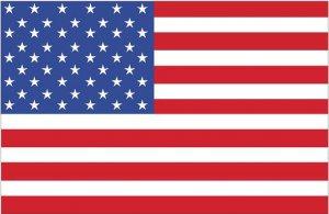 USA Flag Wall Decal