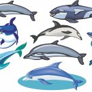 Dolphins Wall Decal Assortment Packs