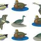 Ducks Wall Decal Assortment Packs