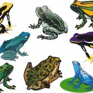 Frogs Wall Decal Assortment Packs
