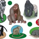 Monkey and Apes Realitistic Wall Decal Assortment Packs