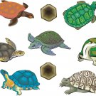Turtles Realitistic Wall Decal Assortment Packs