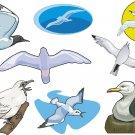 Seagulls Wall Decal Assortment Packs