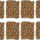 Nuts Wall Decal Pattern Assortment Packs