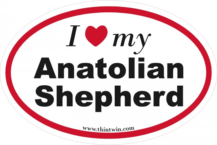 Anatolian Shepherd Oval Car Sticker