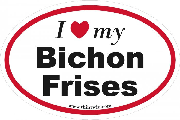Bichon Frises Oval Car Sticker
