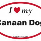 Canaan Dog Oval Car Sticker