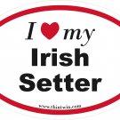 Irish Setter Oval Car Sticker