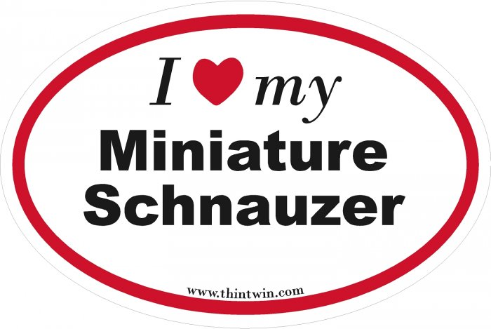 Miniature Schnauzer Oval Car Sticker