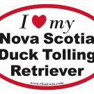 Nova Scotia Duck Tolling Retirever Oval Car Sticker