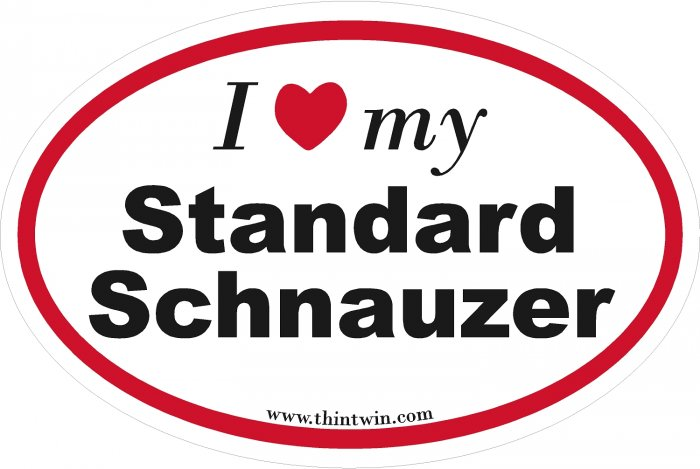 Standard Schnauzer Oval Car Sticker