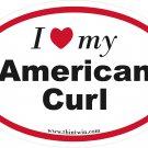 American Curl Oval Car Sticker