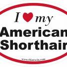 American Shorthair Oval Car Sticker