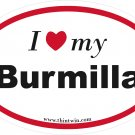 Burmilla Oval Car Sticker