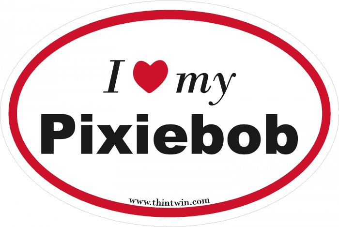 Pixiebob Oval Car Sticker