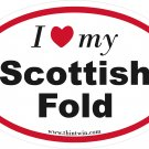 Scottish Fold Oval Car Sticker