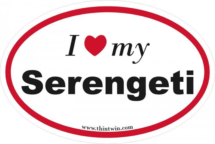Serengeti Oval Car Sticker