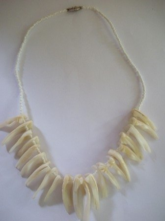 Vintage 80�s Shark Teeth and Shell Necklace