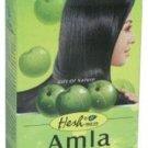 Hesh Amla Powder 100g (Pack of 5) - Free Ship