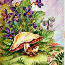 Vintage Greeting Card Frog and Mushroom
