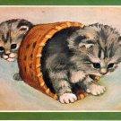 Vintage Greeting Card Sweet Kittens