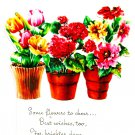 Vintage Greeting Card Flower Pots Garden Flowers Die Cut