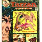 TARZAN #234 DC Comics 1974 GIANT 100 PAGE SPECTACULAR