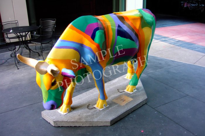 Cows On Parade - Bovine Beauty