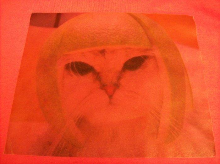10-12, pink, LOL cat - melon head
