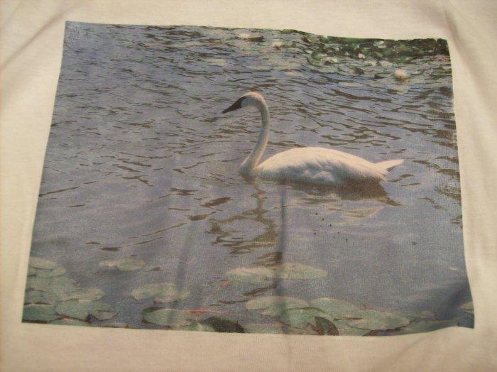 14-16, white, swan