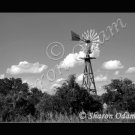 Texas Wooden Windmill Fine Art Print