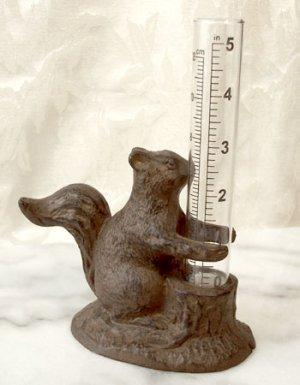 Heavy Cast Iron Squirrel Rain Gauge