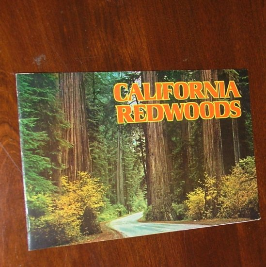 California Redwoods by E F Clements