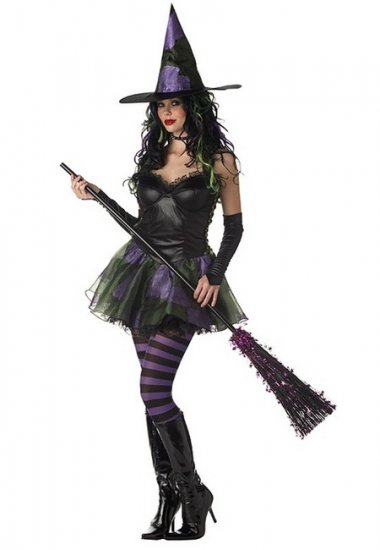 Wicked Witch of the West Adult Costume Size: Large #01045