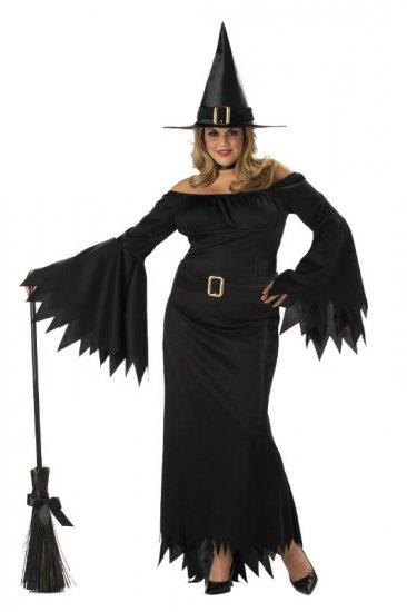 Elegant Witch Adult Plus Size Costume: 2X-Large #01642