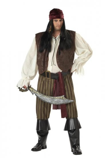 Rogue Pirate Buccaneer Adult Plus Size Costume  #01641