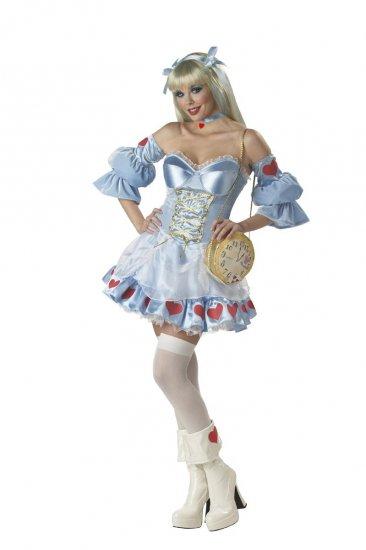 Alice in Wonderland Adult Costume Size: Medium #01049