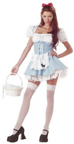 Dorothy Storybook Sweetheart Adult Costume Size: Small #01293