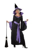 Incantasia The Glamour Witch Adult Costume Size: Medium #00853