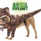 Raptor Dinosaur  Dog Costume Size: Medium #20109