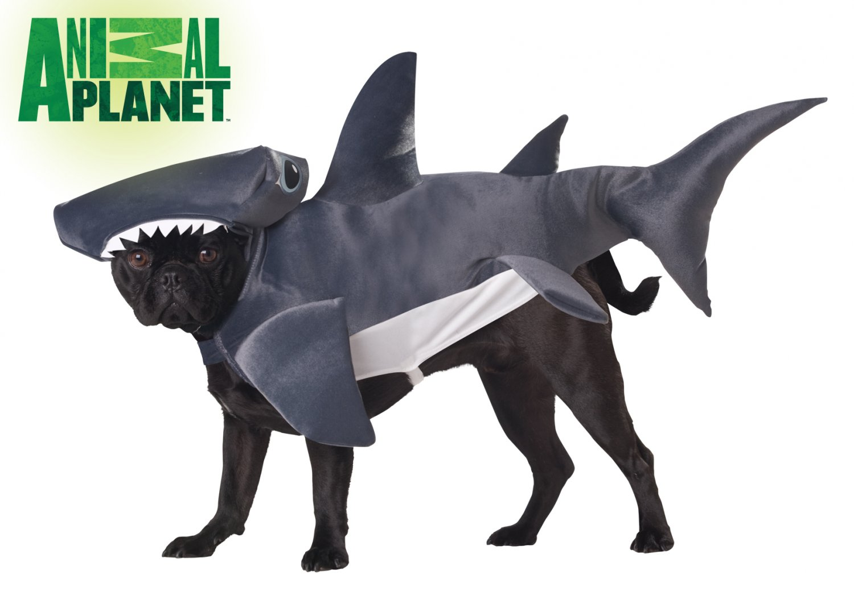 Hammerhead Shark Dog Costume Size: Small #20107