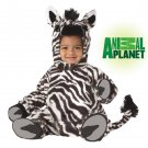 Safari Jungle Zebra Baby Costume Size: Small #10005