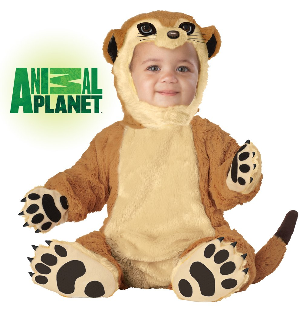 Meerkat  Infant Baby Costume Size: Small #10008