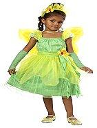 Blossom Fairy Toddler Costume Size: Medium #00096