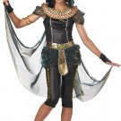 Dark Egyptian Princess Cleopatra Tween Costume Size: Large #04070