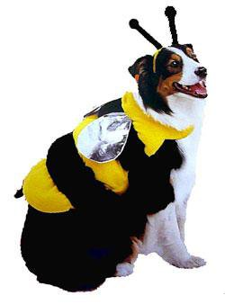 Bumble Bee Pet Dog Costume Size Large