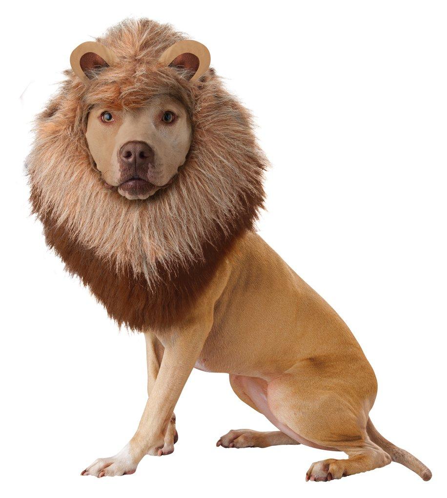 Lion Safari Pet Dog Costume Size: Small #PET20123