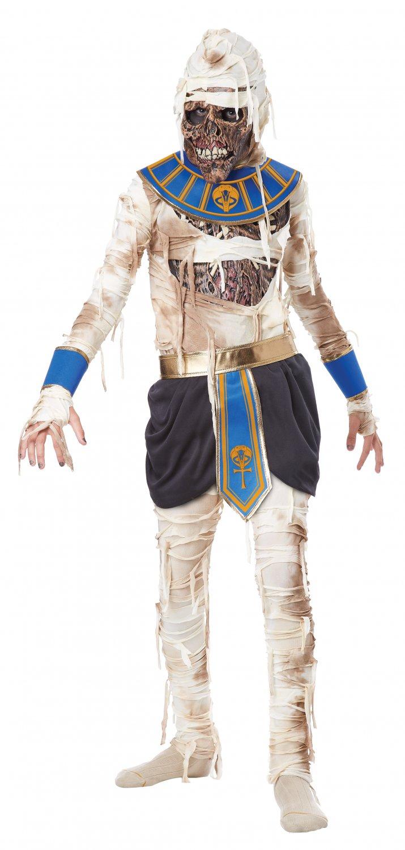 Mummy Pharaoh's Revenge Egyptian Child Costume Size: X-Large #00446