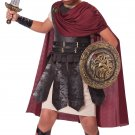 Size: Medium #00449   Trojan Games of Thrones Centurion Spartan Warrior Child Costume
