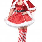 Sexy Mrs Santa Claus Adult Costume Size: Small